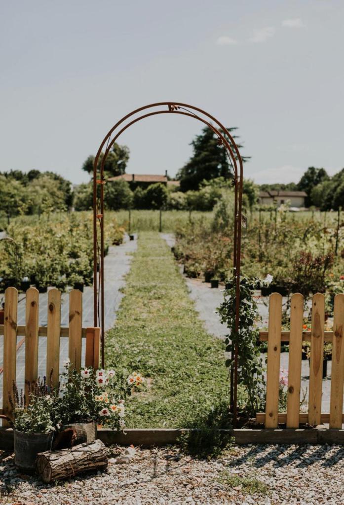 arco anneris flower farm