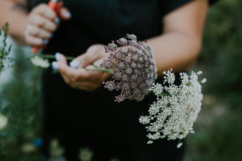 fiori anneris