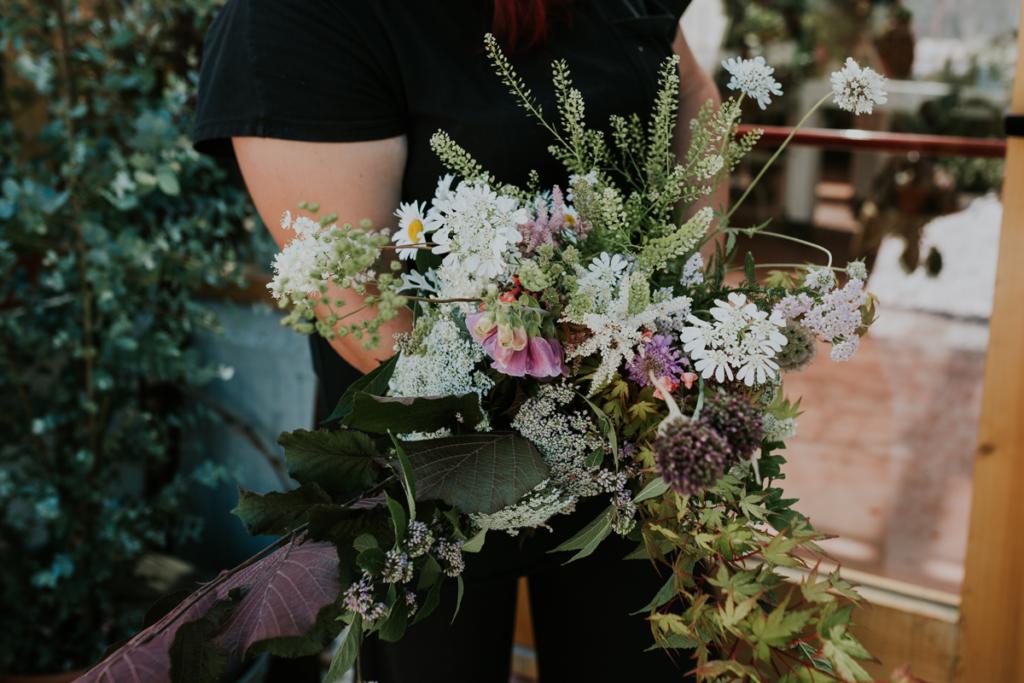 la primavera in flower farmflower farm